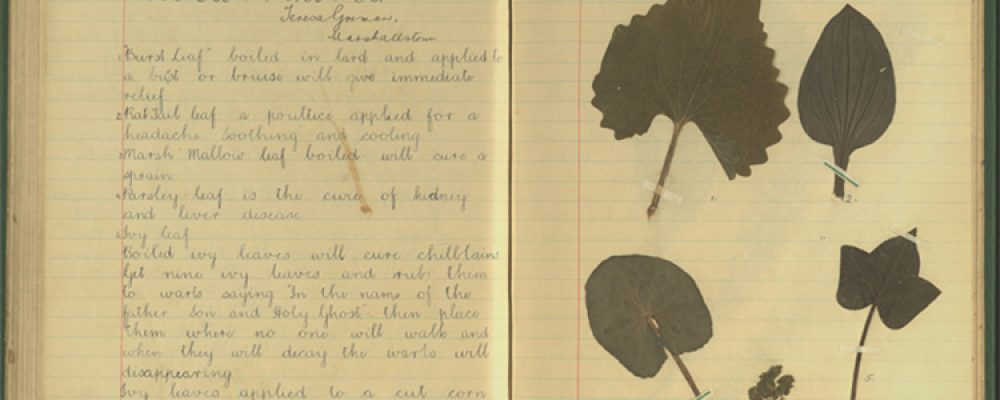 The Schools' Collection – Carrick-on-Suir, Part 1