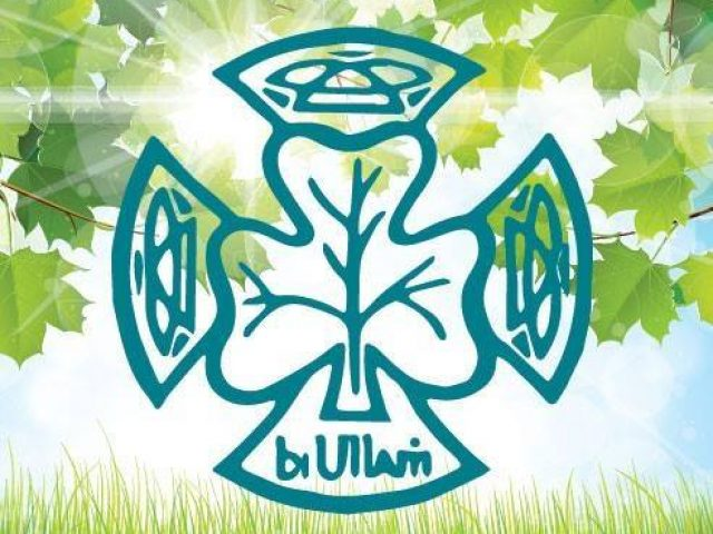 BUION NAOMH NICHOLAS GIRL GUIDES CARRICK ON SUIR