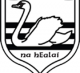 Carrick Swan GAA Club